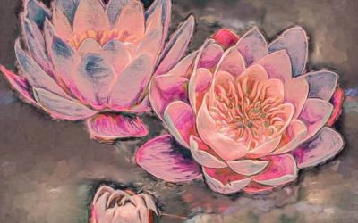 Water Lilies: Travel for Art Inspiration