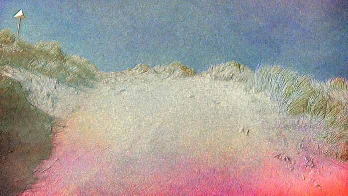 Sand Dune at the coast