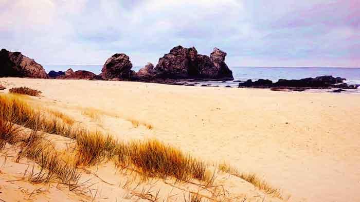 Camel Rock Surf Beach