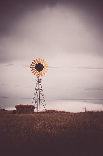 Sunflower Windmill Dunnstown