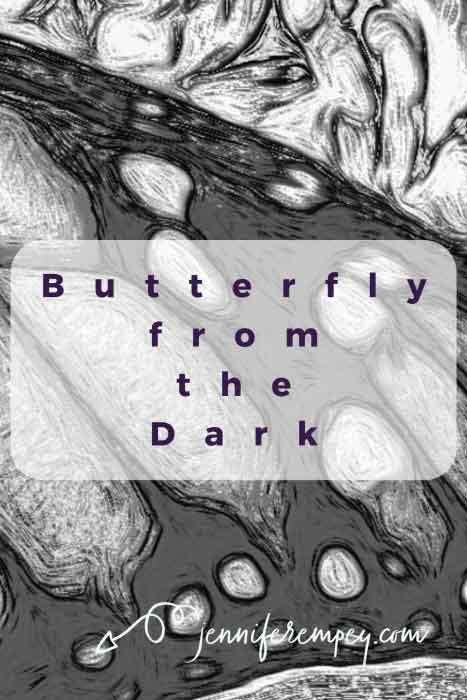 Butterfly from the Dark Pin