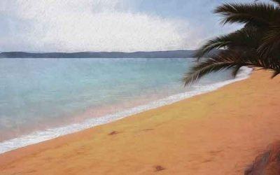 Eden Beach Experience