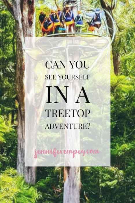 Illawarra Fly Treetop Adventures Pin
