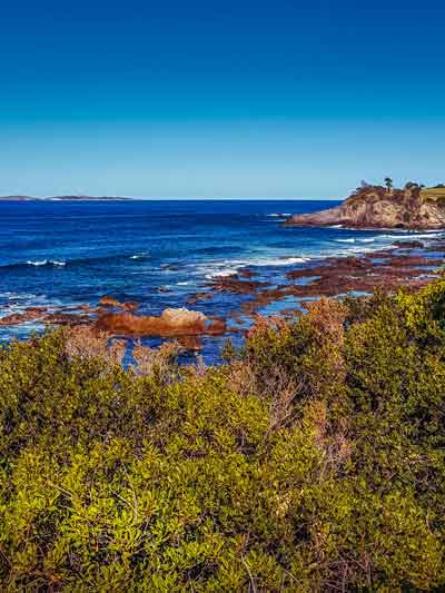 Coast of New South Wales