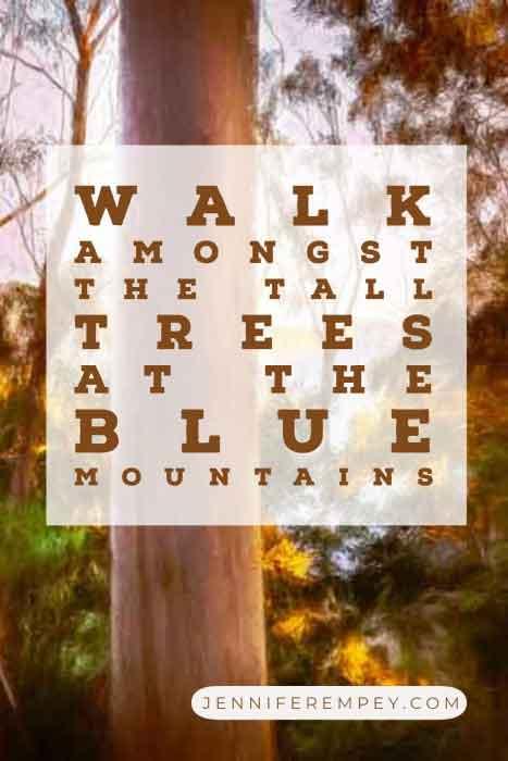Blue Mountains Trees Pin