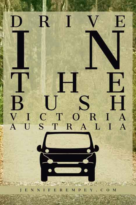 Bush Drive Pin